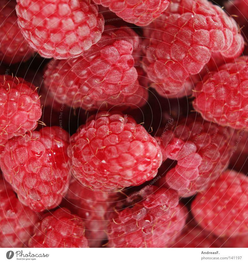 Himbeeren Sommer rot Eis Hintergrundbild Frucht Lebensmittel frisch Ernährung süß Appetit & Hunger Erfrischung Beeren Vitamin saftig Zucker