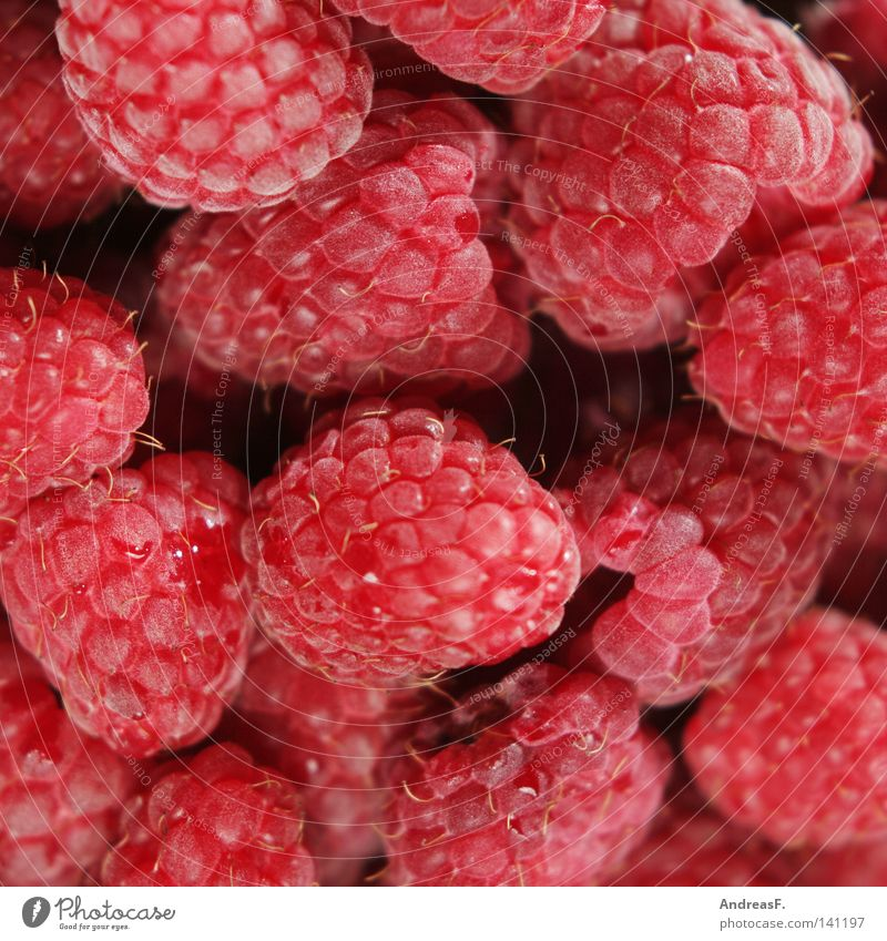 Himbeeren Sommer rot Eis Hintergrundbild Frucht Lebensmittel frisch Ernährung süß Appetit & Hunger Erfrischung Beeren Vitamin saftig Zucker Vegetarische Ernährung