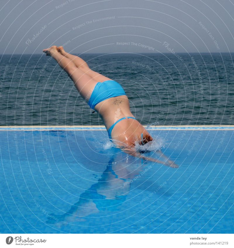 Kopfsprung Deluxe VII Frau Wasser Meer blau Sommer Freude Ferien & Urlaub & Reisen Ferne Sport kalt springen Spielen Linie braun Kraft blond