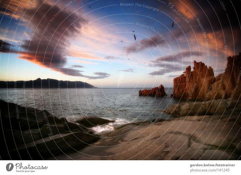 abendhimmel Himmel Wolken Ferne Meer Sardinien Felsen Wasser Vogel Horizont rot Sonnenuntergang Abenddämmerung Italien Brandung Stein Sommer
