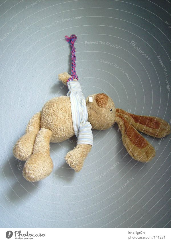 Einfach mal abhängen... Hase & Kaninchen Stofftiere Stoffhase Wand Seil Schnur grau braun hell Schatten Spielzeug warten Hasenzahn Hängeohr obskur Erholung