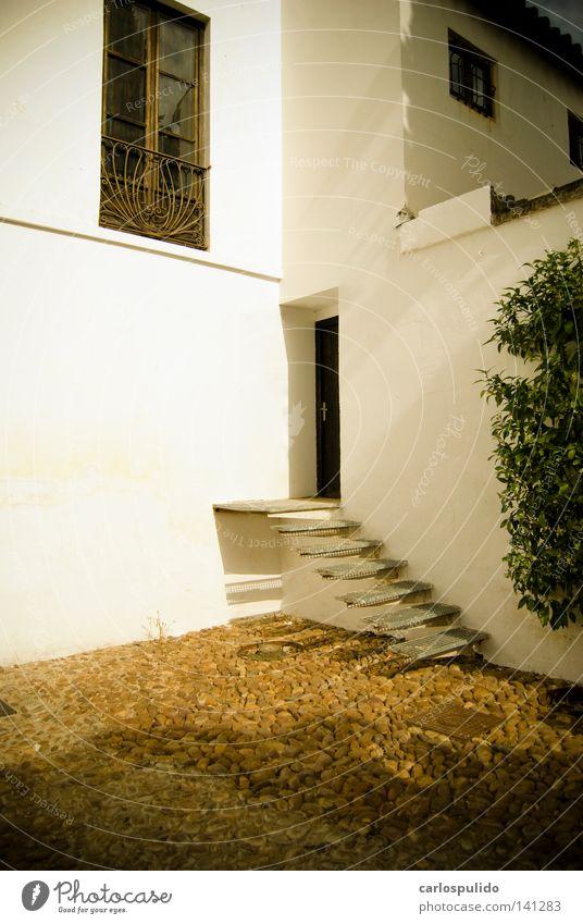 orive Europa mediterran alt viejo Einsamkeit oben Escaleras Andalusien andalusisch Cordoba Spanien españa