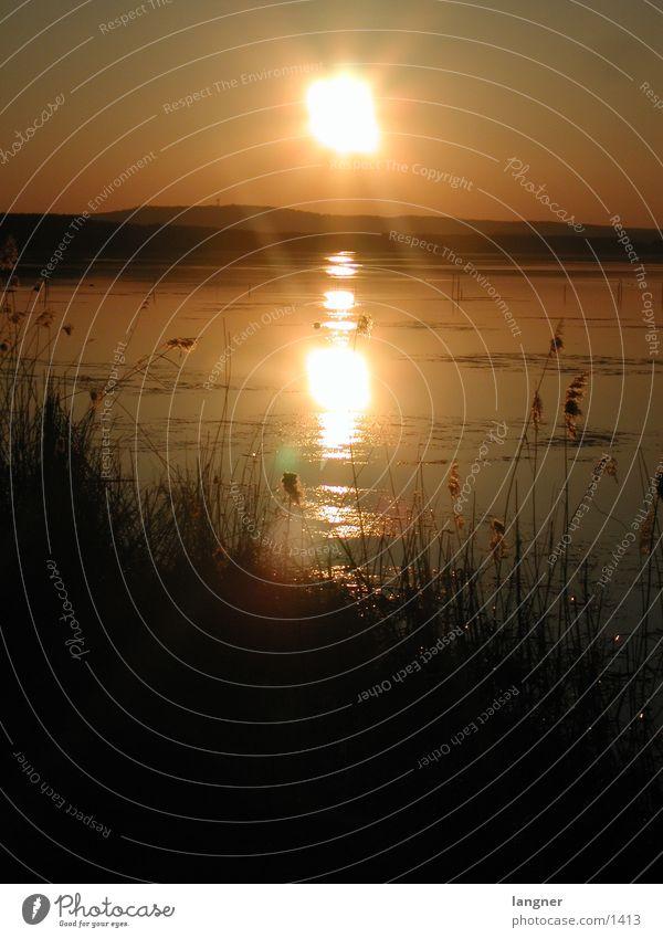 Steinhuder Meer Sonne Meer See Sonnenuntergang