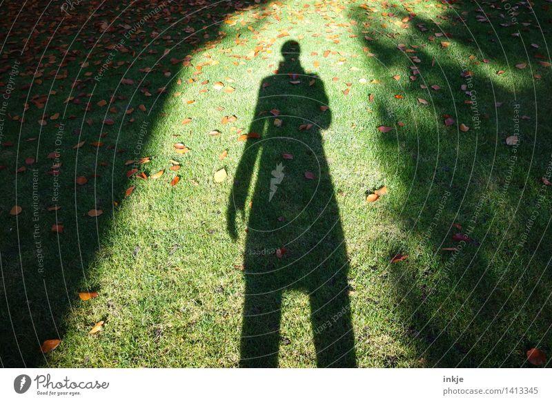 Zieh, Schatten! Mensch Frau Jugendliche grün Junge Frau Blatt dunkel Erwachsene Leben Herbst Gefühle Wiese Gras Stil Lifestyle Garten