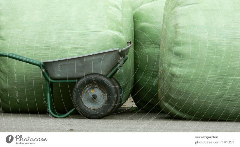 [HH08.2] die öffentliche lightbox vollmachen Natur weiß grün Wiese Garten Raum Metall Kunst lustig leer Güterverkehr & Logistik rund stehen Klima Stoff