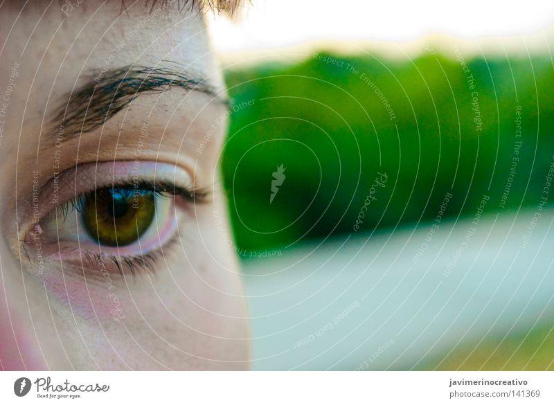 Frau Baum Gesicht Auge Wut Ärger Wimpern Augenbraue Maronen Cordoba Niederlage