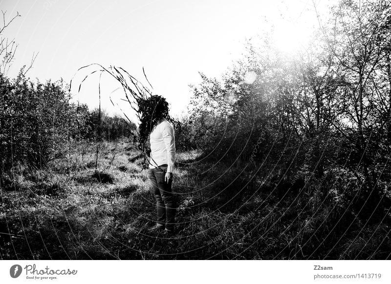 Metamorphose Lifestyle elegant Stil maskulin Junger Mann Jugendliche 18-30 Jahre Erwachsene Umwelt Natur Landschaft Himmel Sonne Sonnenlicht Herbst