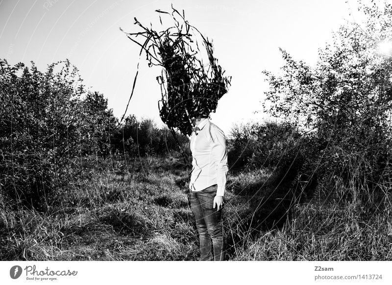 Der Schwarm Natur Jugendliche Junger Mann Landschaft dunkel Erwachsene Herbst Wiese natürlich Mode maskulin träumen elegant modern Sträucher Zukunft
