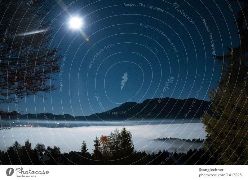 Wolkenmeer Umwelt Natur Landschaft Wolkenloser Himmel Stern Mond Vollmond Herbst Wetter Schönes Wetter Baum Sträucher Berge u. Gebirge Niedere Gipfel ästhetisch