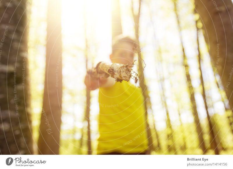Waldwaffe Mensch Kind Natur Sommer Baum Umwelt gelb natürlich Junge Lifestyle Ast einfach Vergänglichkeit Abenteuer berühren