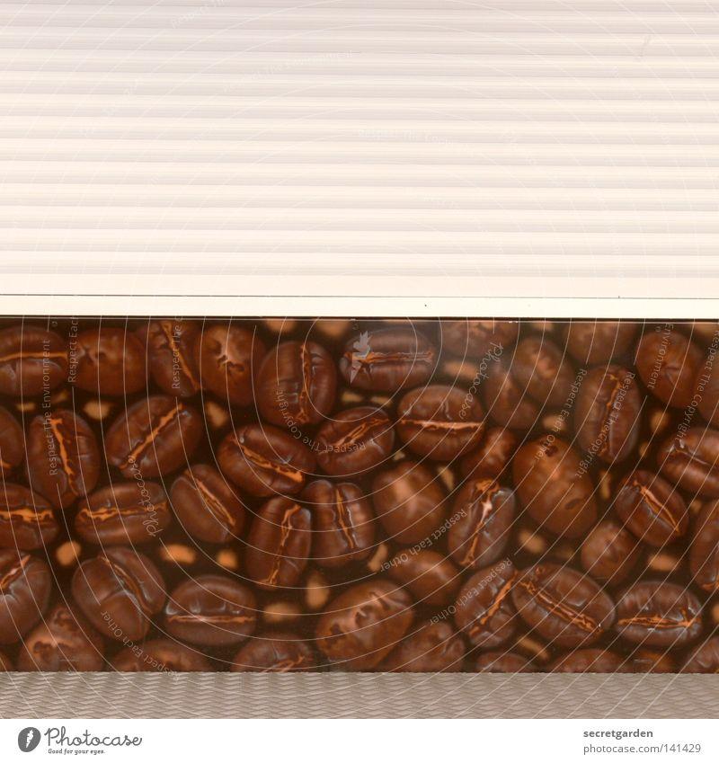 [HH08.2] tote hose mit kaffeebohnen Sommer Freude Einsamkeit Farbe Graffiti braun Raum geschlossen Schilder & Markierungen Kaffee trist Dekoration & Verzierung Kultur Kitsch verfallen Symbole & Metaphern