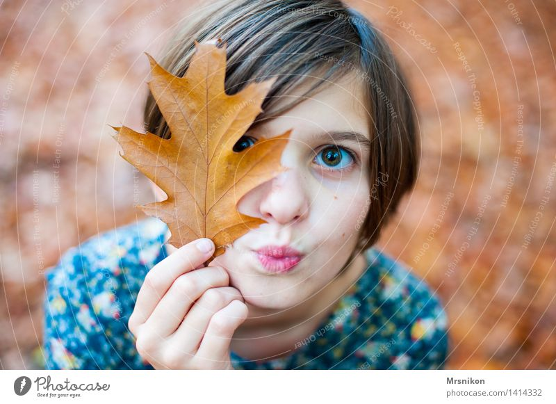 Huhu Mensch Kind Jugendliche Blatt Mädchen Herbst hell Kindheit Lächeln 8-13 Jahre Küssen Herbstlaub herbstlich Herbstfärbung Kussmund Blattfaser