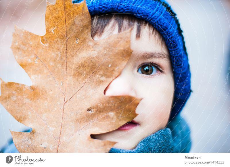 siehst du mich? Kind Kleinkind Junge Kindheit Auge 1 Mensch 3-8 Jahre Blick Herbst herbstlich Herbstbeginn Jahreszeiten Mütze braun brünett Blatt Farbfoto