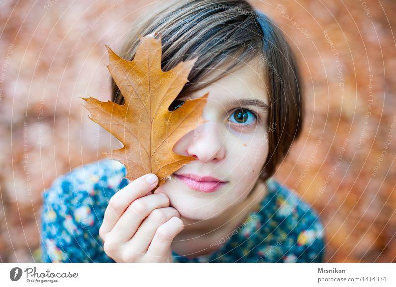 Herbst Mensch Mädchen Kindheit Jugendliche Leben 1 8-13 Jahre Schönes Wetter schön herbstlich Herbstlaub Blatt Laubwald Mädchengesicht Tag