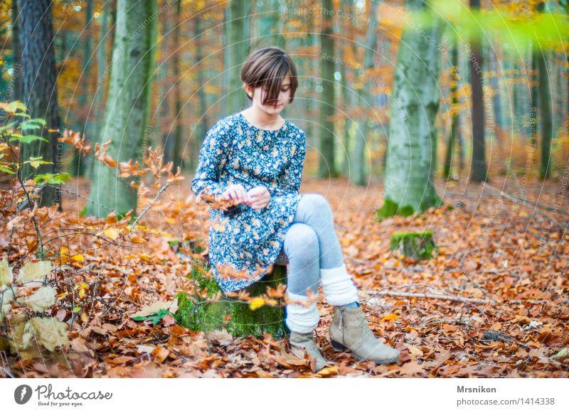 Wo ist der Wolf Mädchen Kindheit Jugendliche 1 Mensch 8-13 Jahre Denken Herbst Herbstlaub herbstlich Herbstwald Herbstbeginn Stulpe Kleid mädchenhaft schön