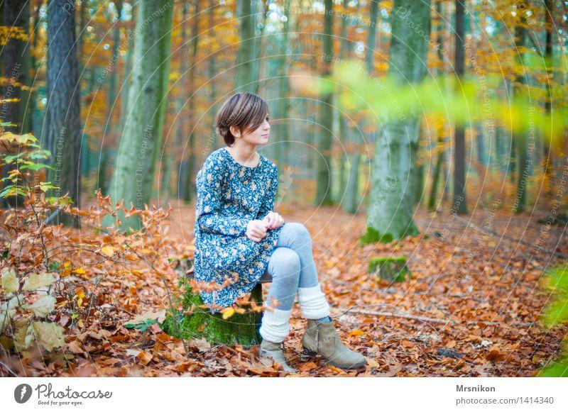 Wald Kind Mädchen Kindheit Jugendliche 1 Mensch 8-13 Jahre kalt dünn Herbst Herbstwald Herbstlaub herbstlich Stulpe Stiefel Kleid mädchenhaft Mädchengesicht