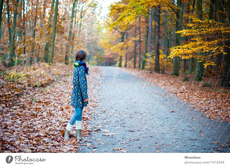 Warten Mensch Kind Jugendliche Einsamkeit ruhig Mädchen kalt Herbst feminin wandern Kindheit warten Kleid 8-13 Jahre Herbstlaub herbstlich