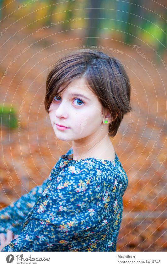 in the wood Mensch feminin Mädchen Kindheit 1 8-13 Jahre Lächeln Blick sitzen Herbst herbstlich Wald Waldboden mädchenhaft Mädchengesicht schön Jugendliche