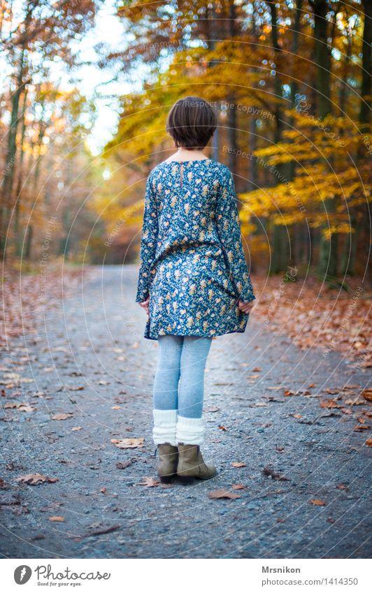 Warten Mensch feminin Kind Mädchen Kindheit Jugendliche Leben 1 8-13 Jahre natürlich Einsamkeit einzeln warten Ruhestand Blick Herbst herbstlich Herbstfärbung