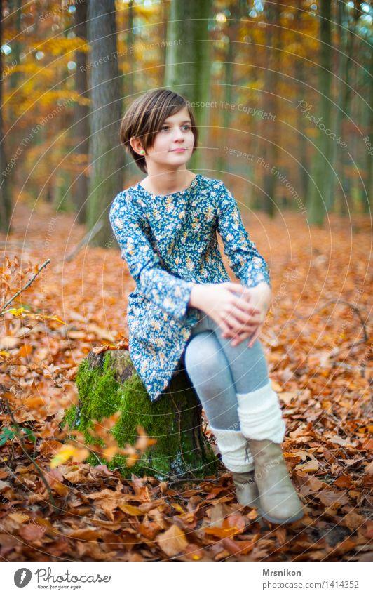 HERBSTWALD Mensch Kind Mädchen Kindheit Jugendliche Leben 1 8-13 Jahre Herbst Wald Blick sitzen warten herbstlich Herbstlaub Stulpe Kleid Baumstumpf Moos
