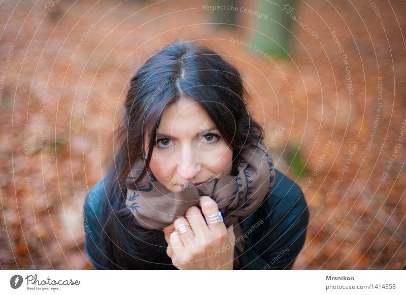 Es wird kälter Mensch Frau rot Einsamkeit Wald Erwachsene Herbst maskulin brünett Herbstlaub frieren herbstlich kuschlig Tuch hocken 30-45 Jahre