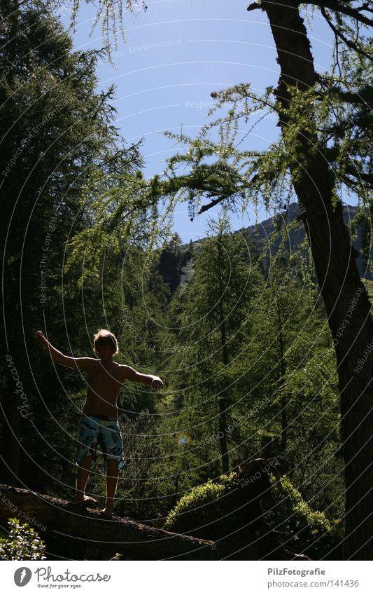 Balance Zufriedenheit Gleichgewicht Baum Wald Natur Gras blau Himmel Jugendliche Freude wandern Berge u. Gebirge Barfuß Moos Baumstamm Holz Badehose