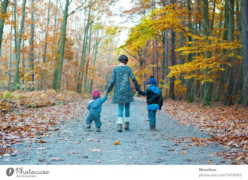Herbst Mensch Kind Natur Freude Mädchen Wald Junge Glück Familie & Verwandtschaft gehen Zusammensein Kindheit laufen Baby 3 8-13 Jahre