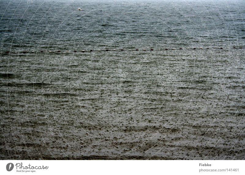 SommerRegen Wasser Himmel Meer Strand Herbst grau See Küste Wellen Wetter nass Wassertropfen gefährlich Pause