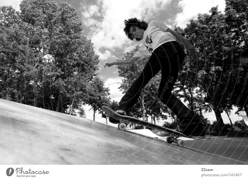 LANDING Skateboarding Sport Jugendliche Stil lässig Baum Park Funsport aufkommen Parkdeck Holzbrett Mensch Jeanshose Coolness ramp Natur