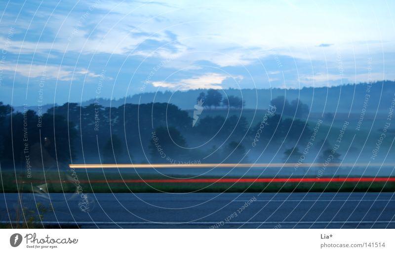 Geisterfahrer Baum Straße Wald Landschaft Motorrad Nebel Zeit Geschwindigkeit fahren Verkehrswege durchsichtig Geister u. Gespenster Kleinmotorrad unterwegs Autoscheinwerfer Landstraße