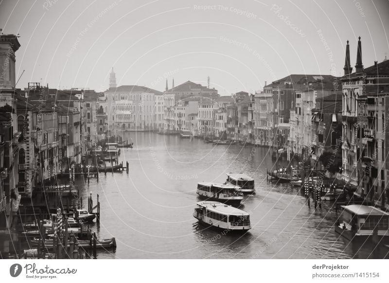 Ein Morgen in Venedig Ferien & Urlaub & Reisen alt Sommer Gefühle außergewöhnlich Tourismus Verkehr authentisch Ausflug Italien Wahrzeichen Denkmal Stadtzentrum