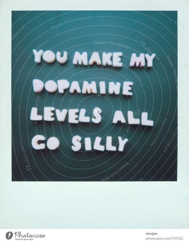 J. Glück Gefühle schön Liebe Wohlgefühl Sinn Polaroid 600 grün blau blau-grün Farbe Text Typographie Buchstaben Wort Zuneigung Leben Niveau durcheinander