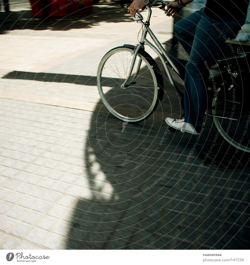 Sonne Freude Straße Fahrrad Verkehr Maschine Fahrzeug Reifen Fan tragen Promenade Geschmackssinn Pedal Rennfahrer Radrennfahrer