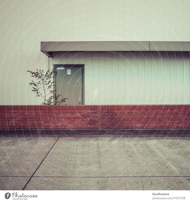 gegenüber von Freiraum Stadt Pflanze rot Einsamkeit Wand Architektur Traurigkeit Gebäude Mauer grau Stein Linie Fassade Metall Tür Sträucher