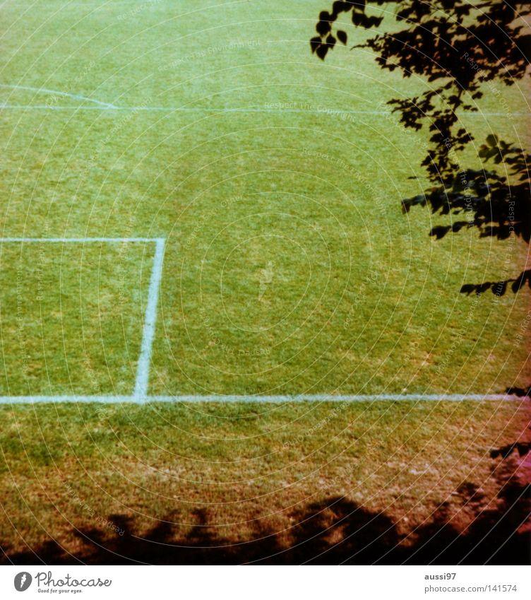 Secretrasen Freizeit & Hobby Fußball Rasen Fußballplatz Weltmeisterschaft Ballsport Elfmeter Fußballmannschaft