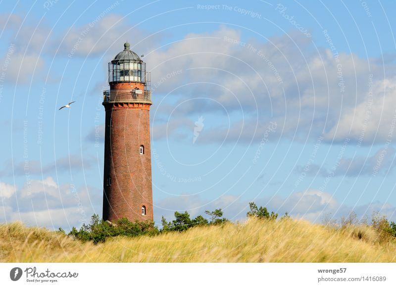 Leuchtturm Darßer Ort Küste Ostsee Düne Bauwerk Architektur Sehenswürdigkeit groß hoch blau braun mehrfarbig gelb grau grün Leuchtfeuer Seezeichen