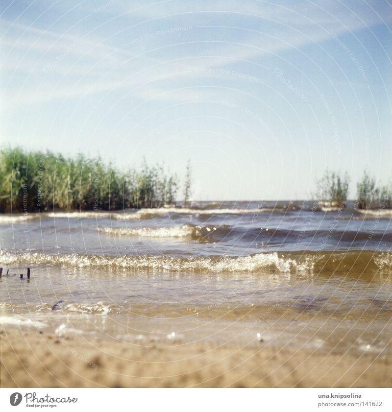 i fell in love with the seaside Himmel blau Ferien & Urlaub & Reisen Wasser grün Sommer Meer Strand Erholung gelb Küste Sand Wellen Seeufer Sonnenbad Ostsee