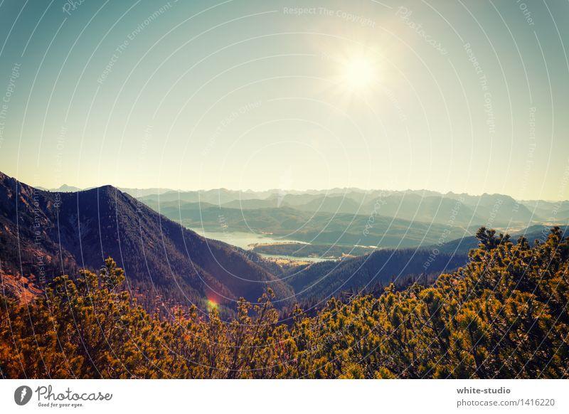Schichten über Schichten Sommer Sommerurlaub Berge u. Gebirge wandern Wolkenloser Himmel Wald Felsen Alpen Gipfel Dunst abgelegen Nebel hoch Wandertag
