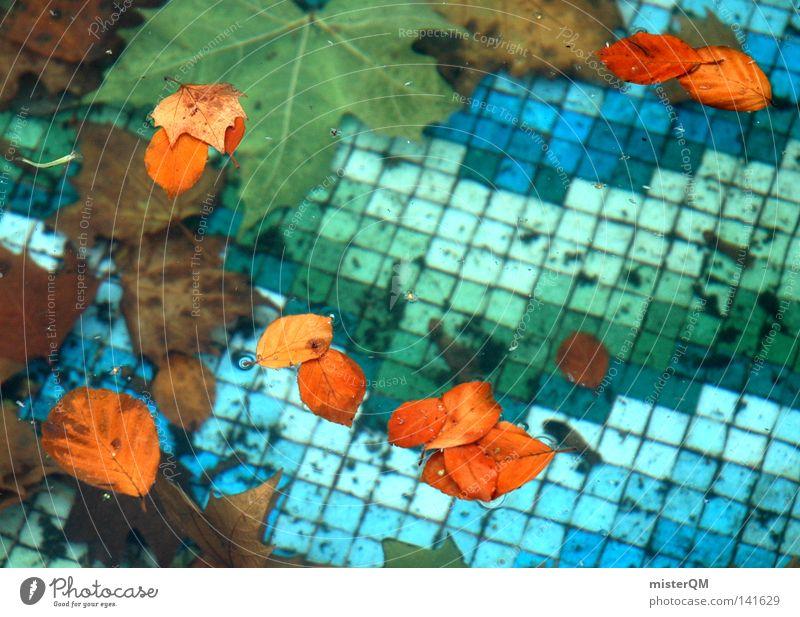 Nebensaison. Zahn der Zeit Fliesen u. Kacheln blau Wasser Blatt Herbst zeitlos Kontrast Physik kalt Bad Freibad Vergänglichkeit Vergangenheit Ahornblatt Tod
