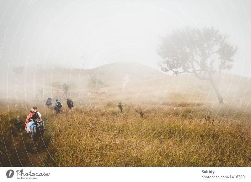 Nebellande Mensch Natur Ferien & Urlaub & Reisen Landschaft Ferne Berge u. Gebirge Tourismus Nebel wandern Idylle laufen Ausflug Abenteuer Klettern entdecken Camping