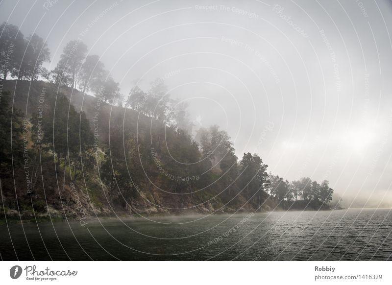 Nebelsee Ferien & Urlaub & Reisen Tourismus Ausflug Abenteuer Expedition Natur Landschaft Wolken Hügel Felsen Berge u. Gebirge Küste Seeufer Flussufer Bucht