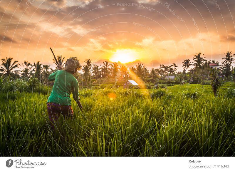 Der letzte Handgriff Arbeit & Erwerbstätigkeit Beruf Gartenarbeit Landwirt Landwirtschaft Forstwirtschaft Mittelstand Feierabend feminin Frau Erwachsene