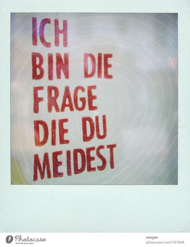 HH08.2 - Frag einfach Polaroid blau weiß rot Angst laufen Fotografie Schriftzeichen Papier Perspektive Buchstaben Schriftstück analog Typographie Wort Seite