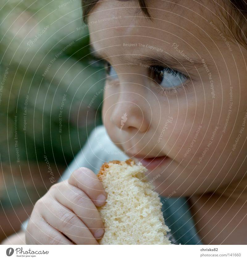 Finger weg!!! Junge Kleinkind Kind Ernährung Versuch Nachbar süß niedlich Knopfauge Kinderaugen Wimpern Wange Sommer Geschmackssinn Denken träumen skeptisch