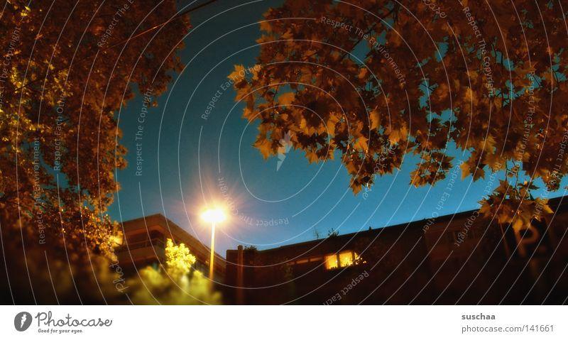 stuttgart .. 28° schön Himmel Baum Stadt Sommer Blatt Straße Lampe träumen Wärme Spaziergang Bar Physik Baumkrone Surrealismus