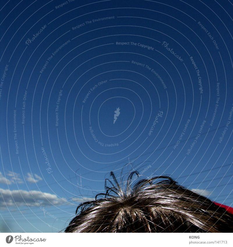 natürlicher glanz Mann Himmel blau Sommer oben Kopf Haare & Frisuren Kopf glänzend hoch Dach Fett Erdöl Friseur Höhepunkt