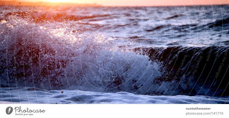 Nach der Arbeit ... Sonne Meer Strand Erholung Küste Sand Wellen Wind Ostsee Sturm genießen Abenddämmerung Brandung Kiel Algen Geräusch