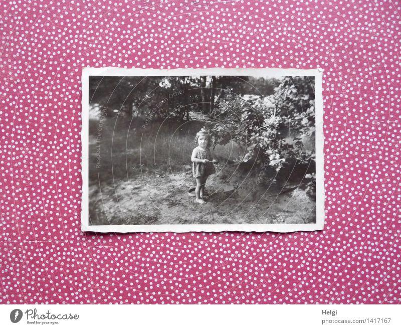 lang ist´s her... Mensch Kind Natur Sommer Baum Landschaft Blatt Mädchen Umwelt Leben Gras feminin Spielen klein Zufriedenheit authentisch