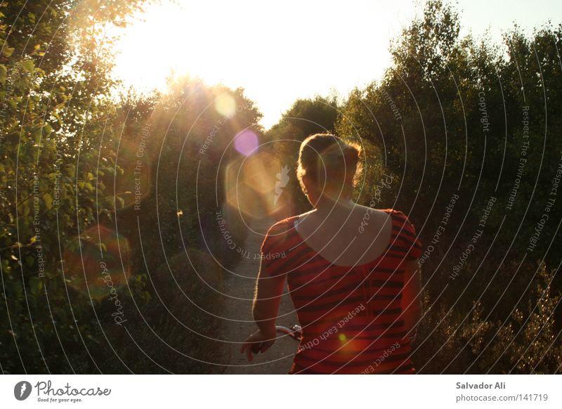 Alice im Sonnenland Sonnenuntergang Fahrrad Fahrradtour grün Wald Freude Natur Sommer Ferien & Urlaub & Reisen Erholung genießen Amrum Fußweg Sonnenstrahlen