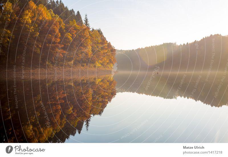 Waldsee 1 Umwelt Natur Landschaft Wasser Himmel Sonne Sonnenlicht Herbst Schönes Wetter Hügel Seeufer Agger Stausee Aggertalsperre ruhig Spiegelbild